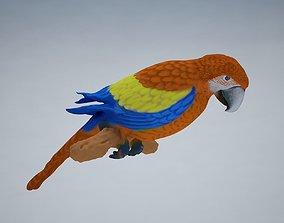 Parrot Low-poly 3D model realtime
