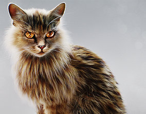 Hyper Realistic Cat model with Fur and shaders ready for