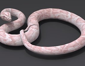 White Snake 3D