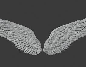 3D Printready Wings