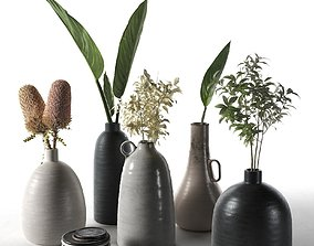 Vases with Plants 3D