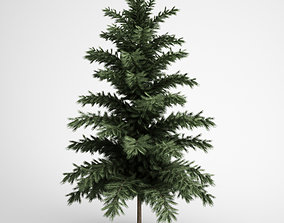 3D model Scots Pine