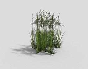 Grass 3D model realtime