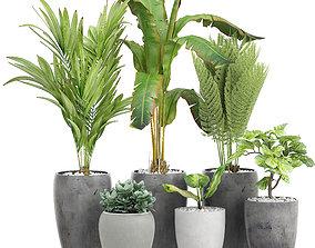 3D model Potted plants 120