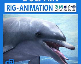 Animated Bottlenose Dolphin 3D asset