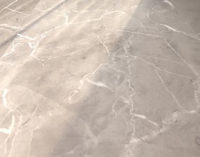 Marble Floor Elegant Greige 120x240 tiles 3D model