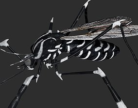 Mosquito 3D model rigged