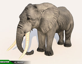 Elephant Animated Lowpoly 3D model