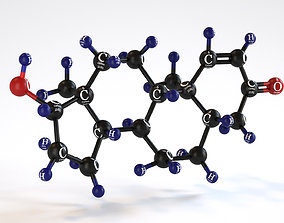 Testosterone - Molecular Model