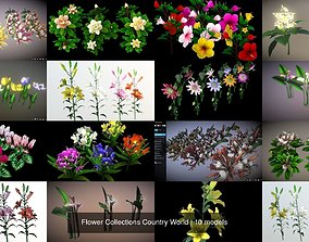 3D model Flower Collections Country World