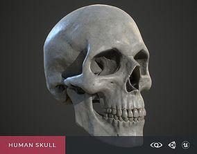 3D asset realtime Human Skull