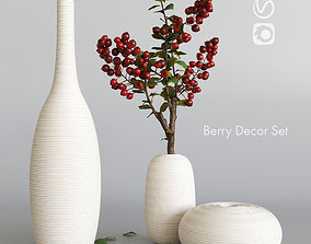 Decorative set with berries 3D model
