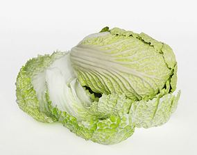 3D model Pok Choi Cabbage