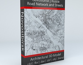 Novosibirsk Road Network and Streets 3D model