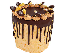 Cake with tangerines and chocolate 3D