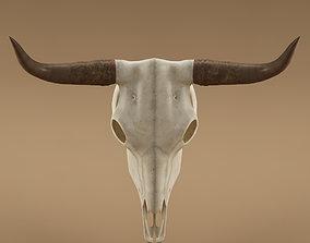 Cow skull 3D model 3d