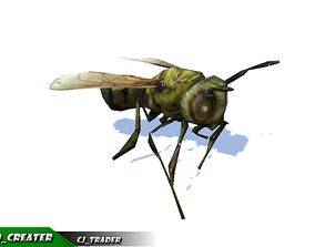 animated Low-Poly Honey Bee Rigged Animated 3d