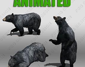 3D model Black Bear Animated