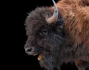 Bison Rigged Hairs 3D model deer