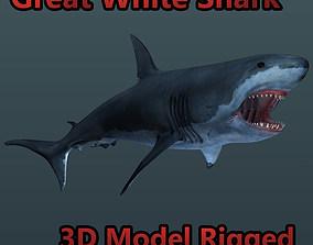 3D model Great White Shark Rigged