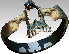3D printable model Part Skull Ring Men Woman Gothic