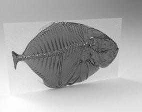 3D xray fish model