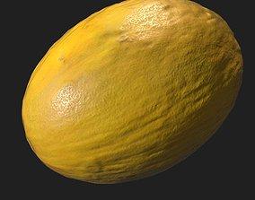 Melon 3D asset realtime PBR
