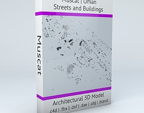 3D model Muscat Streets and Buildings