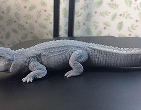 Nile Crocodile 3D print model