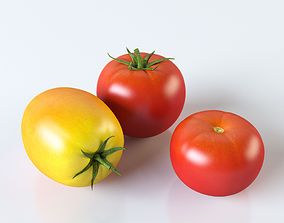 3D plant Tomatoes