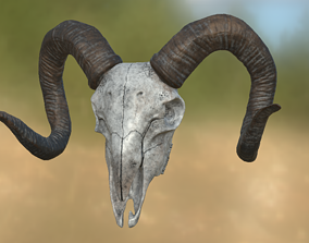 Goat Skull 3D model dead