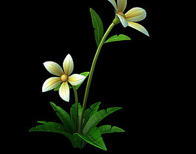 Wild plants - flowers 04 ginkgo 3D model