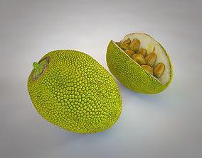 Jackfruit 3D asset