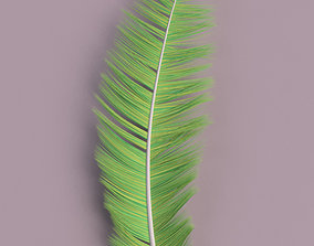 3D Feather
