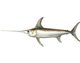 Swordfish Fish Xiphias Gladius 3D model