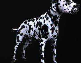 studio Dog model low-poly