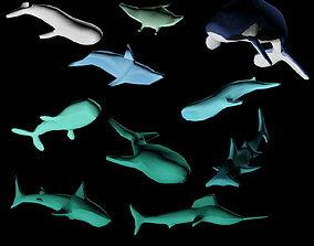 Fish set 3D