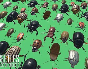 Beetles - pack of insects 3D asset