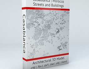 Casablanca Streets and Buildings 3D