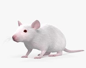 Mouse White HD 3D
