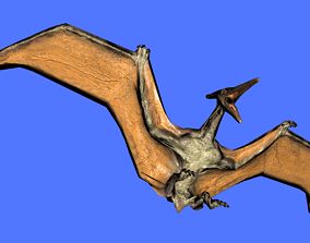 animated Ptera 3D Model