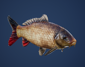 3D asset Carp with Swimming Animation