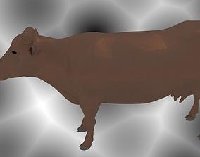 3D print model Cow Animal