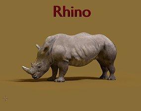 rhinoceros wild 3D model