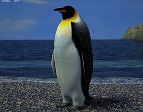 3D model Emperor Penguin Aptenodytes Forsteri
