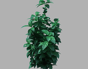 3D Small plants 10