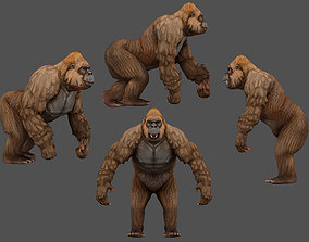 Gorilla 3D asset rigged game-ready