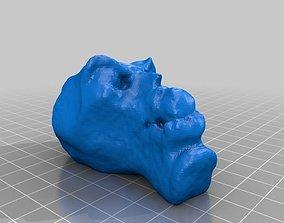 Clay Head Goober 3D printable model