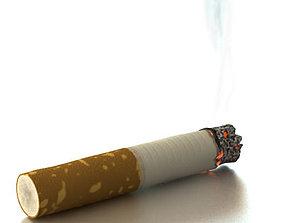 Cigarette Butt 3D