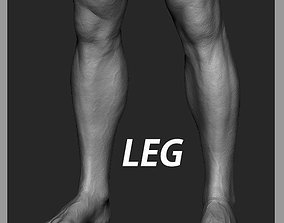 3D Leg Zbrush Sculpt